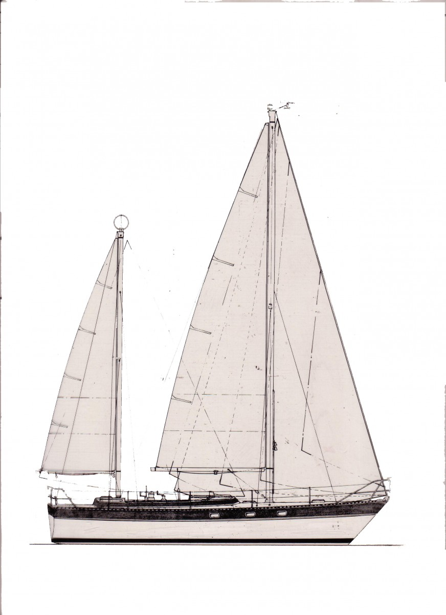 Dawn Light